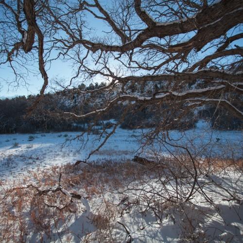Winter Reach