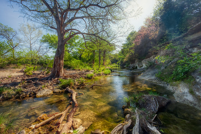 McKinney Falls State Park, Austin Texas, where to take photos, best place to take pictures, Wildsight Photography
