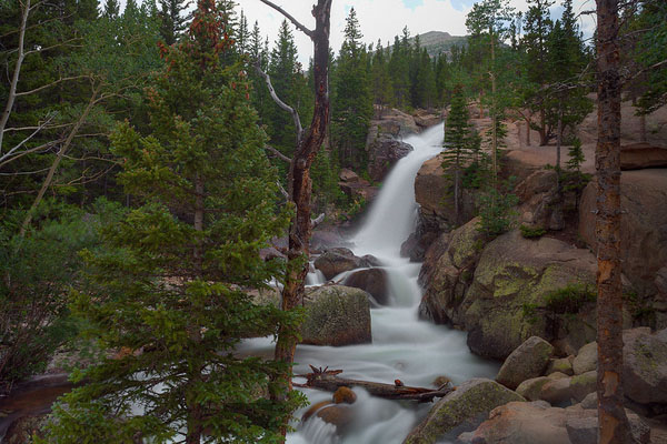 Rocky Mountain National Park: Photos of Colorado's Most Visited Spot by Wildsight Photography. Alberta Falls.
