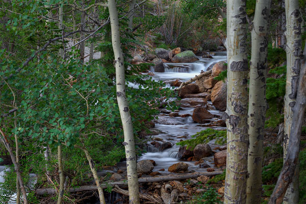 Rocky Mountain National Park: Photos of Colorado's Most Visited Spot by Wildsight Photography. Alberta Falls trail.
