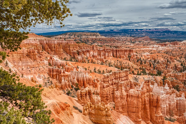 Bryce Canyon National Park: Taking Photos of Utah's Hoodoos, by Wildsight Photography. Bryce Amphitheater