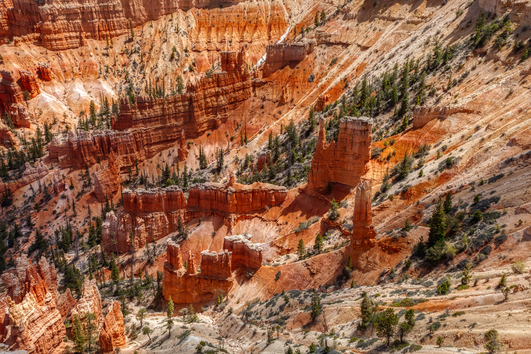 Bryce Canyon National Park: Taking Photos of Utah's Hoodoos