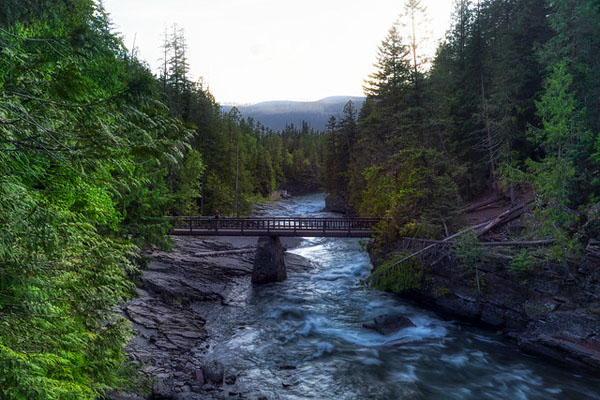 Glacier National Park: Our Favorite Easy to Access Photo Spots by Wildsight Photography. McDonald Creek bridge, John Lake Trail