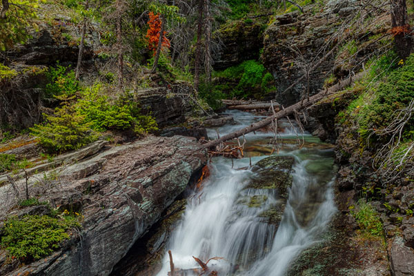Glacier National Park: Our Favorite Easy to Access Photo Spots by Wildsight Photography. Sunrift Gorge, Montana