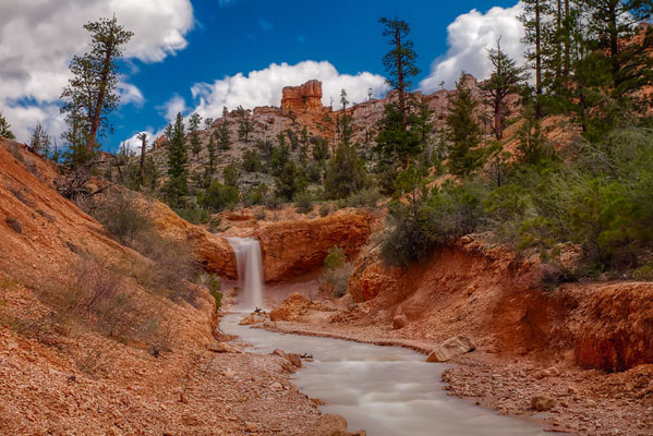 Bryce Canyon National Park: Taking Photos of Utah's Hoodoos, by Wildsight Photography. Mossy Cave Trail