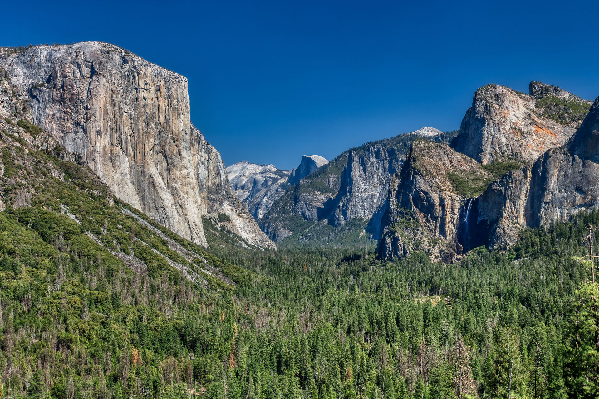 Yosemite National Park: Taking Photos of Half Dome and El Capitan