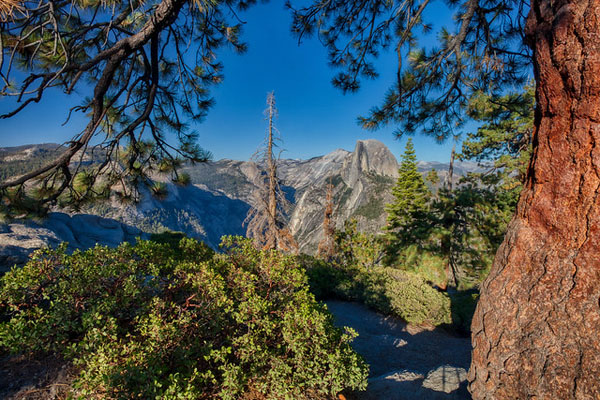 Yosemite National Park, Wildsight Photography, Half Dome, Glacier Point