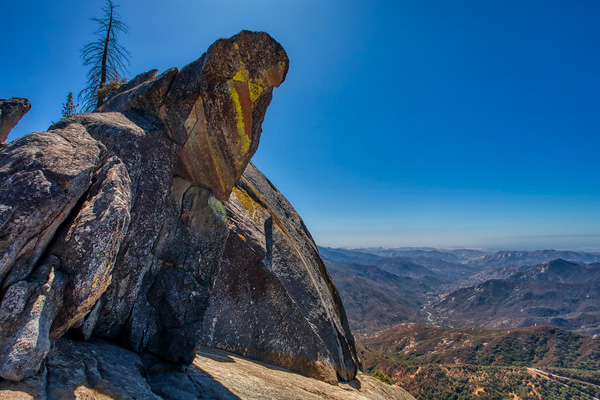 Sequoia National Park, Moro Rock, Wildsight Photography